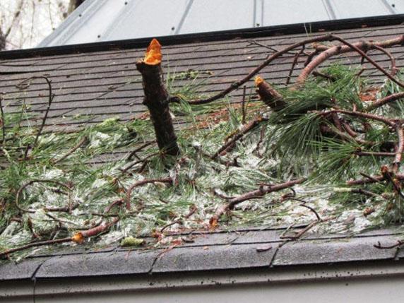Mother-Nature-Damage